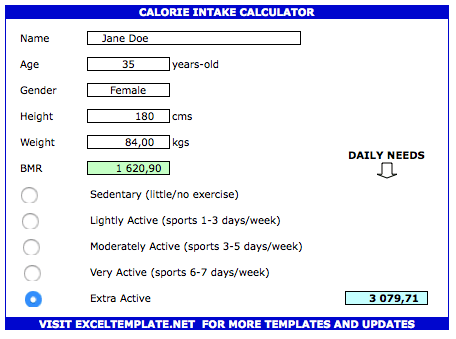 Calorie Tracker Spreadsheet intake calculator