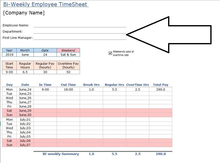 Employee Timesheet Customize