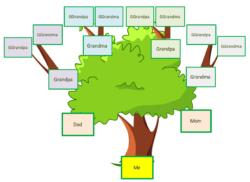 Family Tree Template Kids 4 Generation