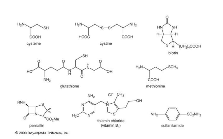 Hexagonal Graph Template Chemistry