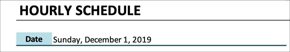 Hourly Schedule Date