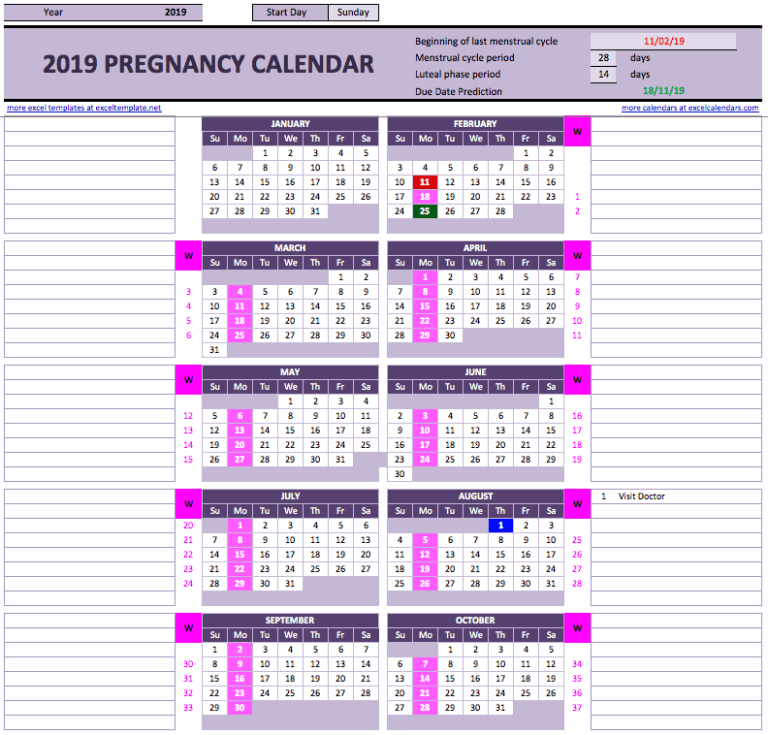 Menstruation Calculator Pregnancy pink