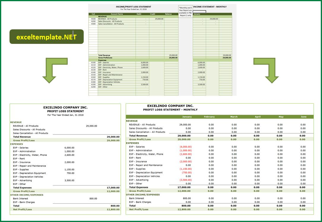 Accounting for Service Business - PnL Report